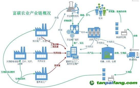 富碳农业的产业链发展情况是怎样的?