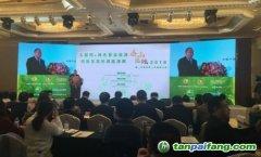 《巴黎协定》正式生效 中国能源战略正加速转型