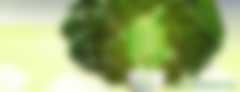 重庆2017年度新能源汽车财政补助标准:购买纯电动车最高补贴2万元/辆 插电式混合动力车最高补贴1万元/辆