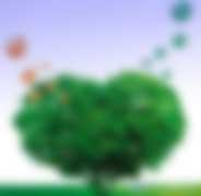 """北京市园林绿化局关于印发《北京市园林绿化应对气候变化""""十三五""""行动计划》的通知【京绿办发〔2017〕9号】全文"""