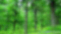 政策解读|国家林业局《省级林业应对气候变化2017—2018年工作计划》