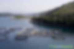 蛤蛎需要为相当大比例的温室气体负责