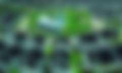 绿色混合融资的国际经验和中国路径