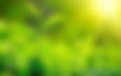 央企绿色产业发展的经验模式和建议