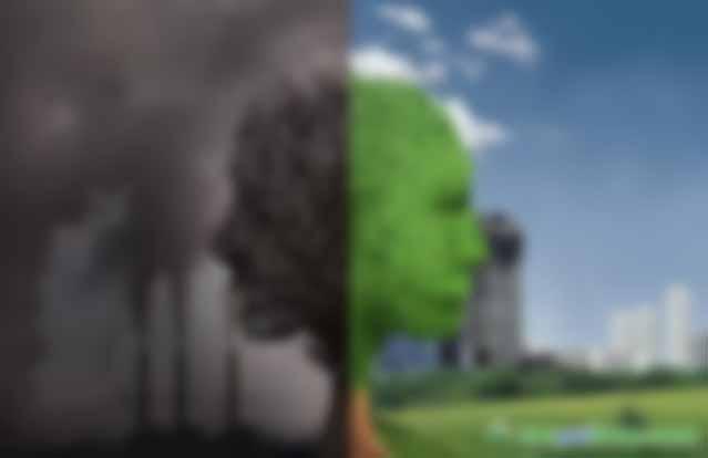 碳期权,抢占全球碳交易市场先机