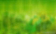 """马骏:发展绿色金融要警惕""""洗绿""""风险"""
