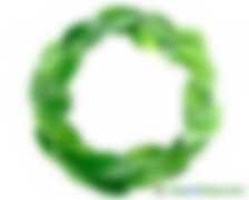 朱戈:探索绿色资产交易机制