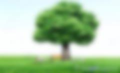 中国清洁发展机制网官方网站网址由cdm.ccchina.gov.cn改为cdm.ccchina.org.cn