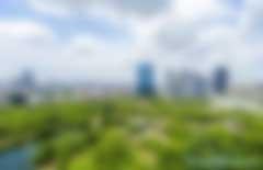 """森林城市:涂抹""""绿""""生活"""
