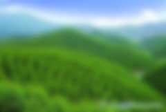 林业碳汇林补贴骗局是怎么回事儿?