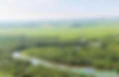 建设森林城市,拥抱绿色生活 ——国家森林城市建设成就综述