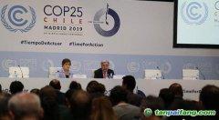 联合国气候变化大会进入第二周 联大主席促加快谈判