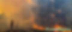 澳洲山火已烧死10亿动物,而气候变化灾难才刚刚开始