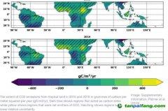 非洲的热带地区也是二氧化碳排放源!