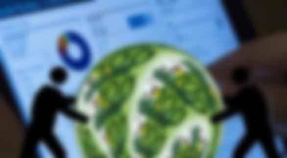 构建支持绿色技术创新的金融服务体系