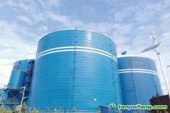 50000吨粉煤灰钢板仓储项目如何建设的成功案例分析