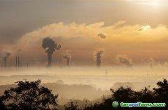 排放权配额拍卖规则的域外经验与中国模式