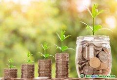 建设绿色低碳循环发展经济体系