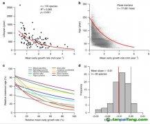长得快的树木活不长,或影响碳储量