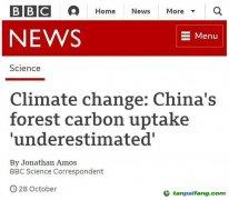 """BBC:中国植树造林的作用""""被低估了"""" 中国是全球变绿的重要力量"""