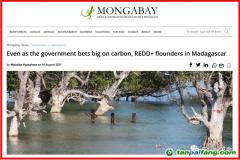 马达加斯加政府在碳问题投下巨注,但REDD+在该国实施仍举步维艰