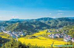 中国乡村振兴工作委员会介绍及入会条件